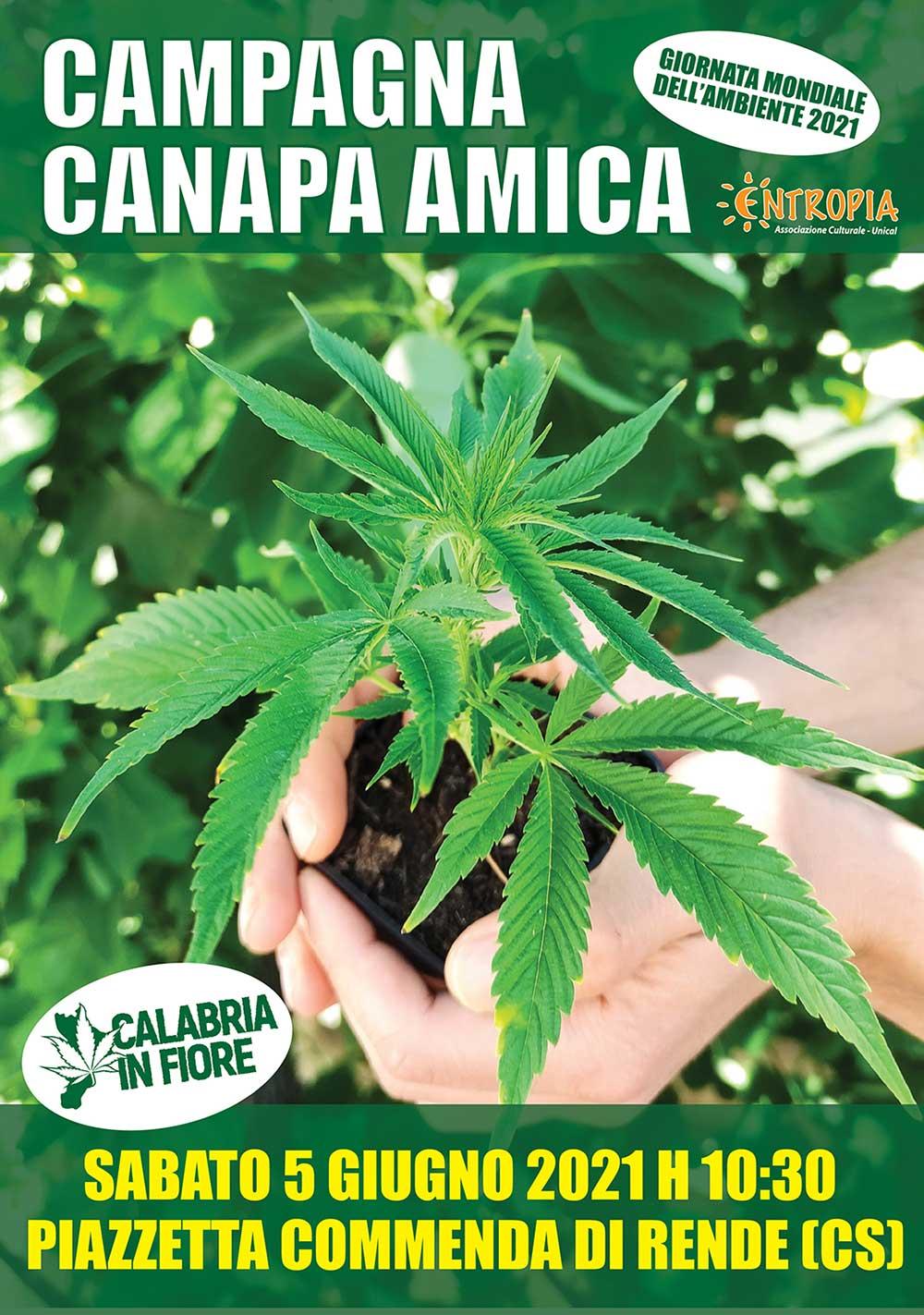 CANAPA_AMICA_ok